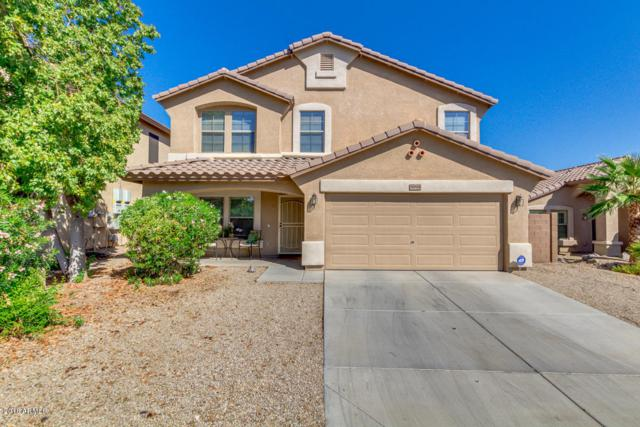 11814 W Robin Drive, Sun City, AZ 85373 (MLS #5824003) :: The Bill and Cindy Flowers Team