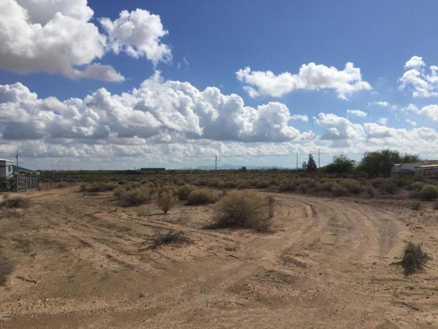 7901 S 350th Avenue, Tonopah, AZ 85354 (MLS #5824011) :: Yost Realty Group at RE/MAX Casa Grande