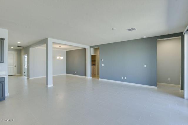 35835 N Loemann Drive, San Tan Valley, AZ 85143 (MLS #5824017) :: The Everest Team at My Home Group