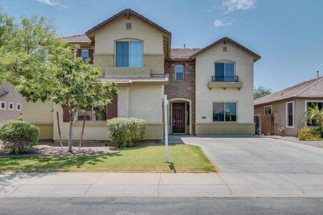 3633 E Sparrow Place, Chandler, AZ 85286 (MLS #5824033) :: The W Group