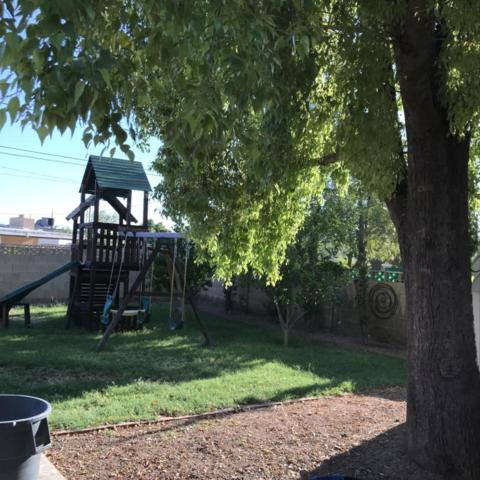 2247 W Palo Verde Drive, Phoenix, AZ 85015 (MLS #5824034) :: The W Group