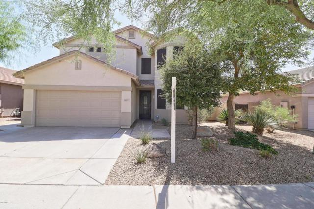 18177 W Cardinal Drive, Goodyear, AZ 85338 (MLS #5824035) :: The W Group