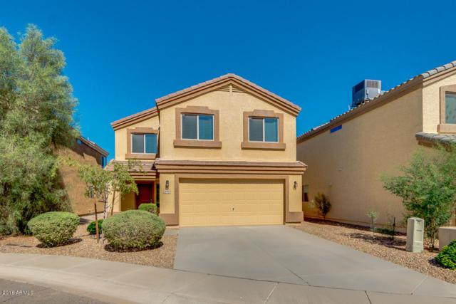 23935 N Desert Agave Street, Florence, AZ 85132 (MLS #5824042) :: Brett Tanner Home Selling Team