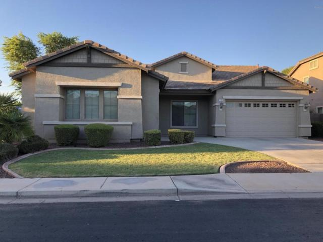 1796 E Glacier Place, Chandler, AZ 85249 (MLS #5824050) :: The Everest Team at My Home Group