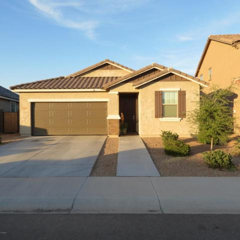 12036 W Desert Sun Lane, Peoria, AZ 85383 (MLS #5824074) :: The Everest Team at My Home Group