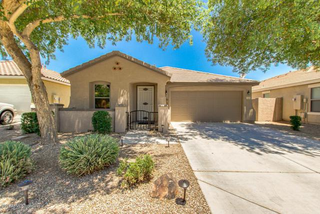 21852 E Creosote Drive, Queen Creek, AZ 85142 (MLS #5824097) :: The Everest Team at My Home Group
