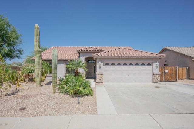13312 W Desert Rock Drive, Surprise, AZ 85374 (MLS #5824099) :: The Garcia Group @ My Home Group