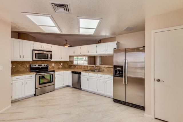 18813 N 71ST Lane, Glendale, AZ 85308 (MLS #5824103) :: Occasio Realty
