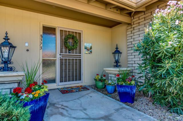 8373 E Via De Los Libros Drive, Scottsdale, AZ 85258 (MLS #5824108) :: Riddle Realty