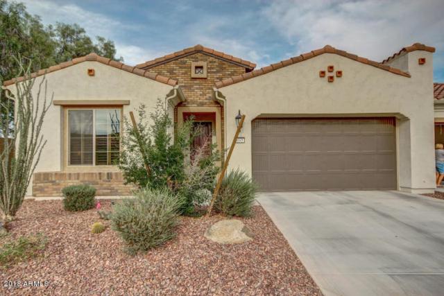 4045 N 163RD Drive, Goodyear, AZ 85395 (MLS #5824132) :: REMAX Professionals