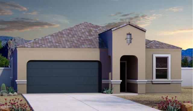1246 E Paul Drive, Casa Grande, AZ 85122 (MLS #5824140) :: REMAX Professionals