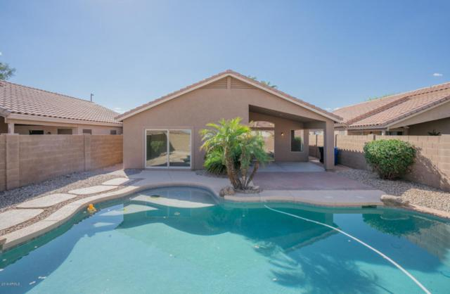 18307 N 147TH Drive, Surprise, AZ 85374 (MLS #5824141) :: The Everest Team at My Home Group
