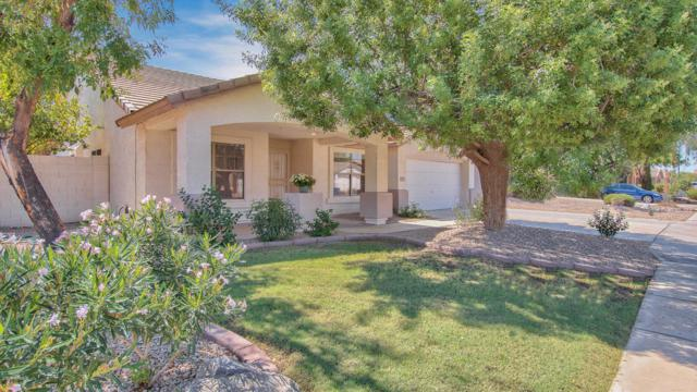 2053 E Willow Wick Road, Gilbert, AZ 85296 (MLS #5824164) :: The Everest Team at My Home Group