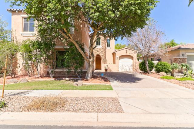 848 E Torrey Pines Place, Chandler, AZ 85249 (MLS #5824167) :: The Everest Team at My Home Group