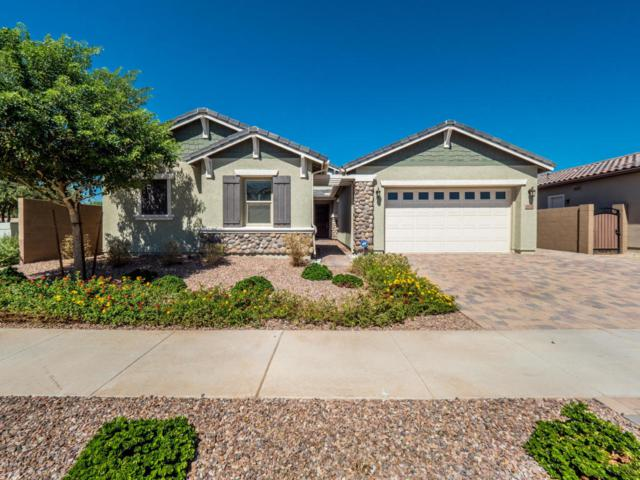 19726 E Apricot Court, Queen Creek, AZ 85142 (MLS #5824178) :: The Everest Team at My Home Group