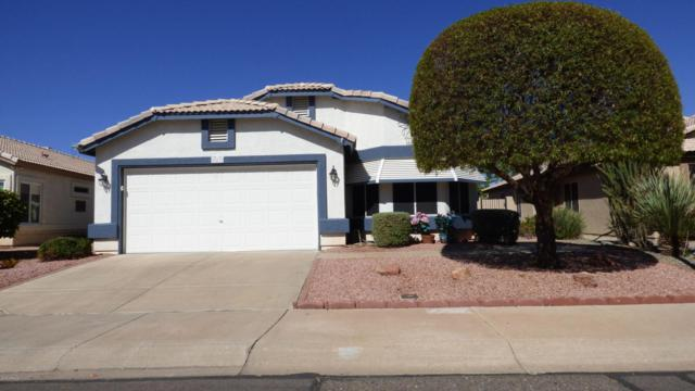 20479 N 105TH Avenue, Peoria, AZ 85382 (MLS #5824181) :: Riddle Realty