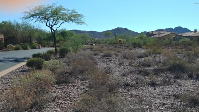 7147 E Wilderness Trail, Gold Canyon, AZ 85118 (MLS #5824186) :: Keller Williams Realty Phoenix