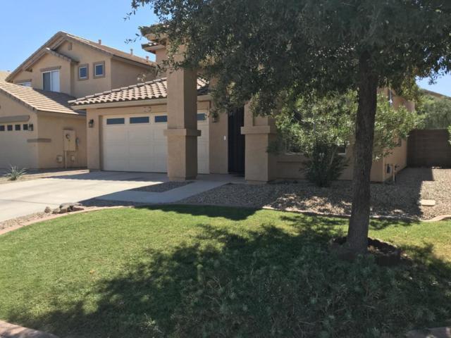 44327 W Oster Drive, Maricopa, AZ 85138 (MLS #5824190) :: Occasio Realty
