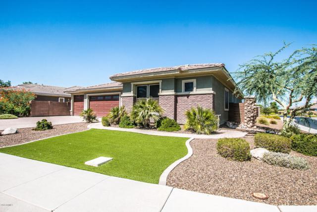 2712 E Palm Street, Mesa, AZ 85213 (MLS #5824239) :: Keller Williams Realty Phoenix