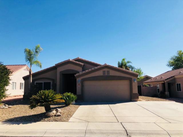 11153 W Madeline Christian Avenue, Surprise, AZ 85378 (MLS #5824243) :: Keller Williams Realty Phoenix