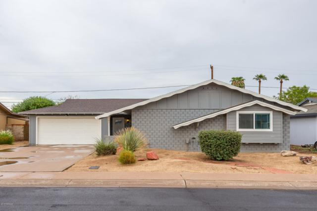 8310 E Devonshire Avenue, Scottsdale, AZ 85251 (MLS #5824254) :: The W Group