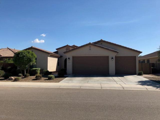 801 W Leatherwood Avenue, San Tan Valley, AZ 85140 (MLS #5824294) :: The Garcia Group