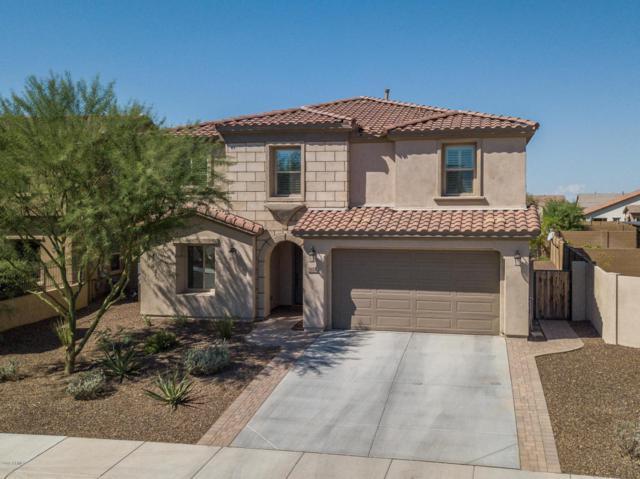 31168 N 137TH Lane, Peoria, AZ 85383 (MLS #5824412) :: REMAX Professionals