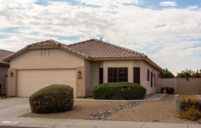 8831 W Paradise Drive, Peoria, AZ 85345 (MLS #5824437) :: REMAX Professionals
