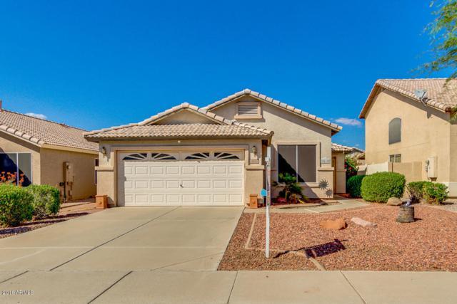 8610 W Paradise Drive, Peoria, AZ 85345 (MLS #5824445) :: The W Group
