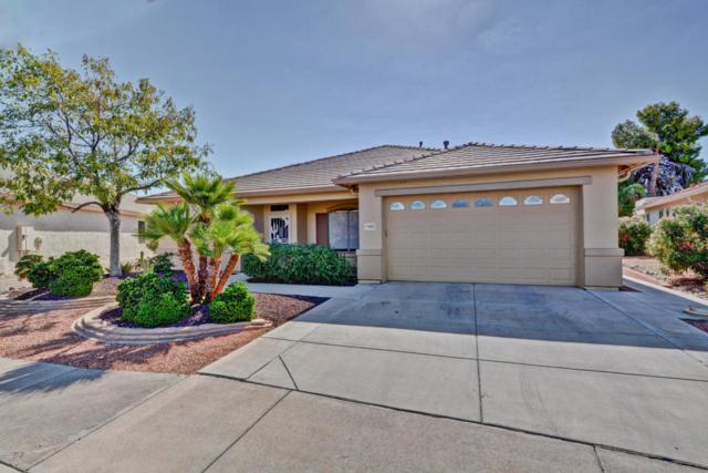 17655 N Goldwater Drive, Surprise, AZ 85374 (MLS #5824501) :: The Garcia Group @ My Home Group