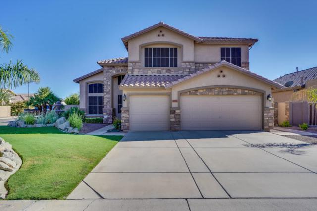 6005 W Kimberly Way, Glendale, AZ 85308 (MLS #5824504) :: REMAX Professionals