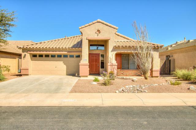 42478 W Oakland Drive, Maricopa, AZ 85138 (MLS #5824532) :: Yost Realty Group at RE/MAX Casa Grande