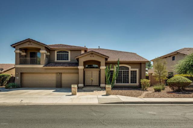 13513 W Windsor Boulevard, Litchfield Park, AZ 85340 (MLS #5824551) :: REMAX Professionals