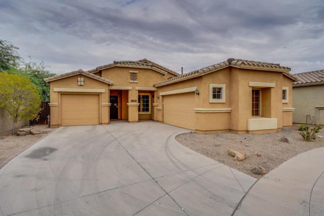 7518 S 15TH Drive, Phoenix, AZ 85041 (MLS #5824566) :: RE/MAX Excalibur