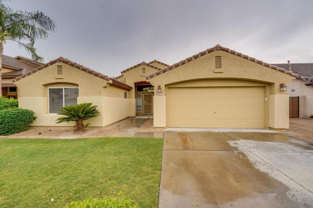 8219 W Quail Avenue, Peoria, AZ 85382 (MLS #5824585) :: Sibbach Team - Realty One Group