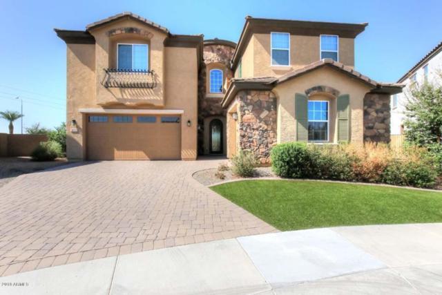 980 S Marie Drive, Chandler, AZ 85225 (MLS #5824609) :: REMAX Professionals
