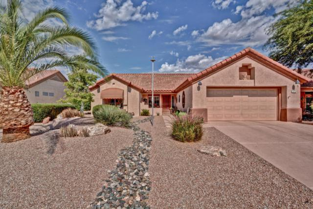 16156 W Sentinel Drive, Sun City West, AZ 85375 (MLS #5824653) :: The W Group