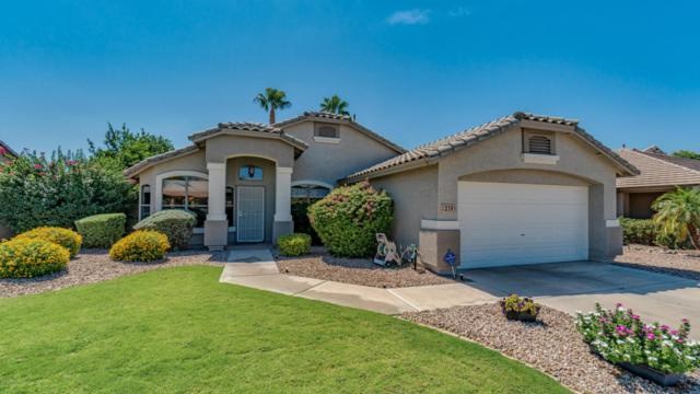 2391 E Geronimo Street, Chandler, AZ 85225 (MLS #5824685) :: Sibbach Team - Realty One Group