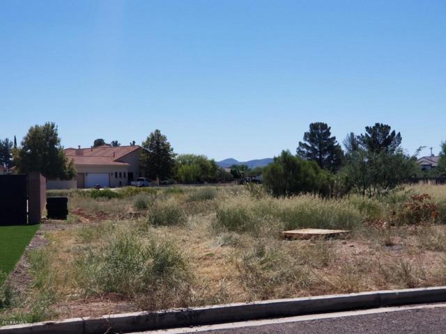 2923 E Acacia Court, Douglas, AZ 85607 (MLS #5824723) :: Arizona Home Group