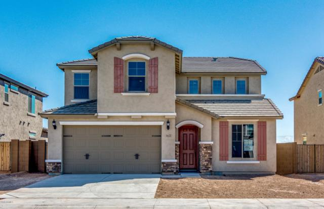 9653 W Fallen Leaf Lane, Peoria, AZ 85383 (MLS #5824766) :: Sibbach Team - Realty One Group