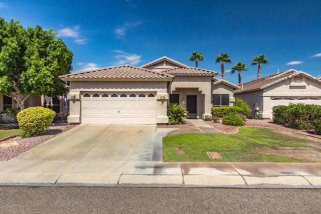 6664 W Aurora Drive, Glendale, AZ 85308 (MLS #5824788) :: Sibbach Team - Realty One Group