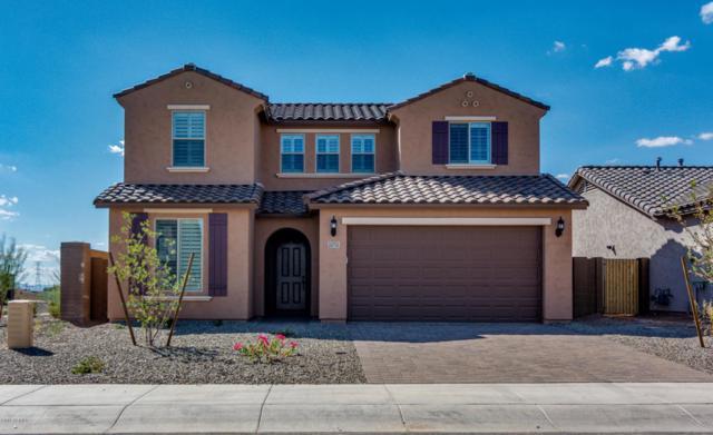 24758 N 96TH Lane, Peoria, AZ 85383 (MLS #5824801) :: Sibbach Team - Realty One Group