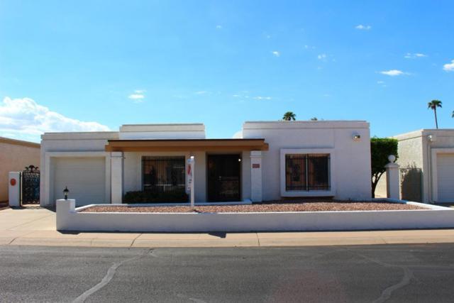 807 E Villa Rita Drive, Phoenix, AZ 85022 (MLS #5824803) :: Sibbach Team - Realty One Group
