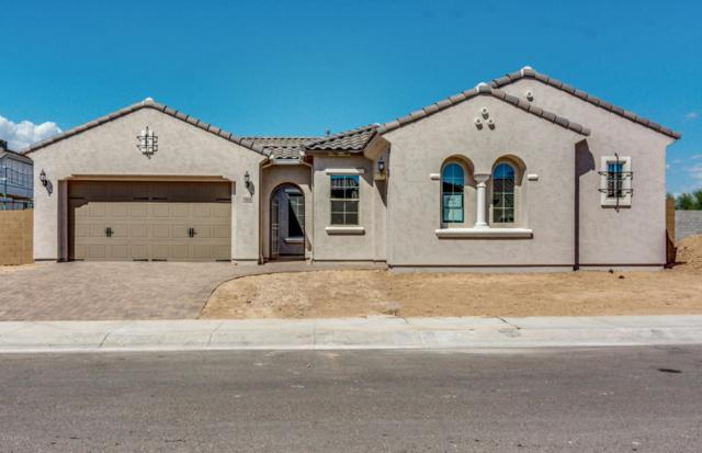9404 W Fallen Leaf Lane, Peoria, AZ 85383 (MLS #5824858) :: Sibbach Team - Realty One Group