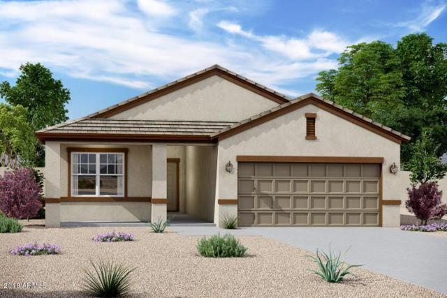 36975 W Capri Avenue, Maricopa, AZ 85138 (MLS #5824874) :: The W Group