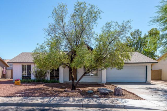 6327 W Laredo Street, Chandler, AZ 85226 (MLS #5824904) :: Sibbach Team - Realty One Group