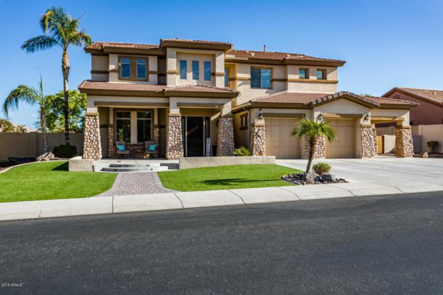9174 W Andrea Drive, Peoria, AZ 85383 (MLS #5824908) :: Sibbach Team - Realty One Group