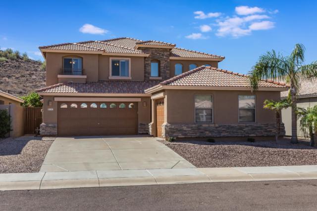 6341 W Villa Linda Drive, Glendale, AZ 85310 (MLS #5825027) :: The Everest Team at My Home Group