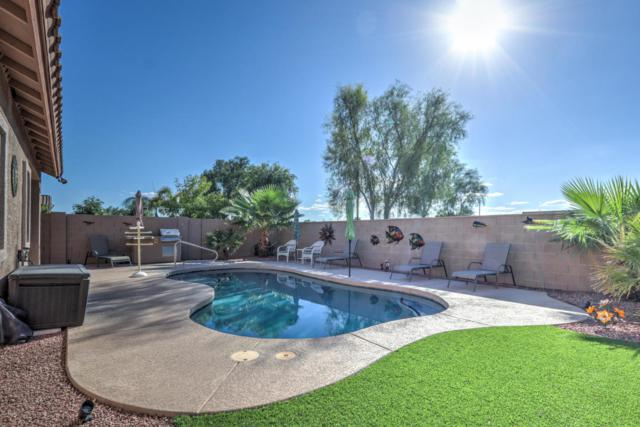 18514 N Jameson Drive, Maricopa, AZ 85138 (MLS #5825069) :: Yost Realty Group at RE/MAX Casa Grande