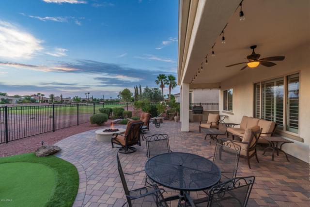 22116 N Pedregosa Drive, Sun City West, AZ 85375 (MLS #5825186) :: Desert Home Premier